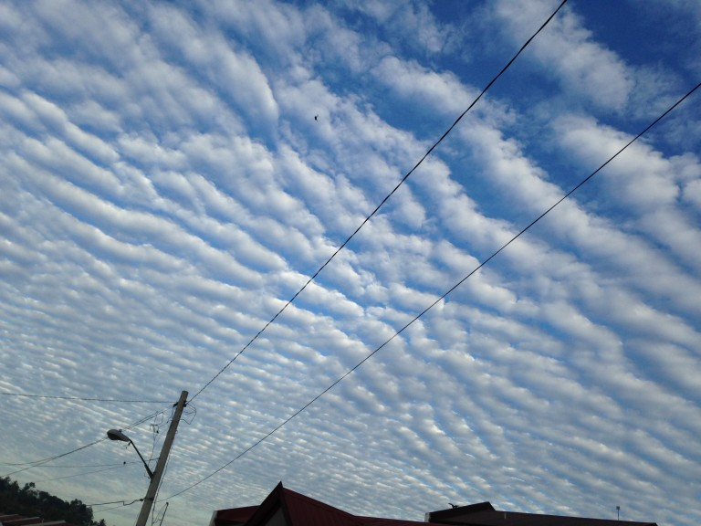 Clouds produced by gravity waves